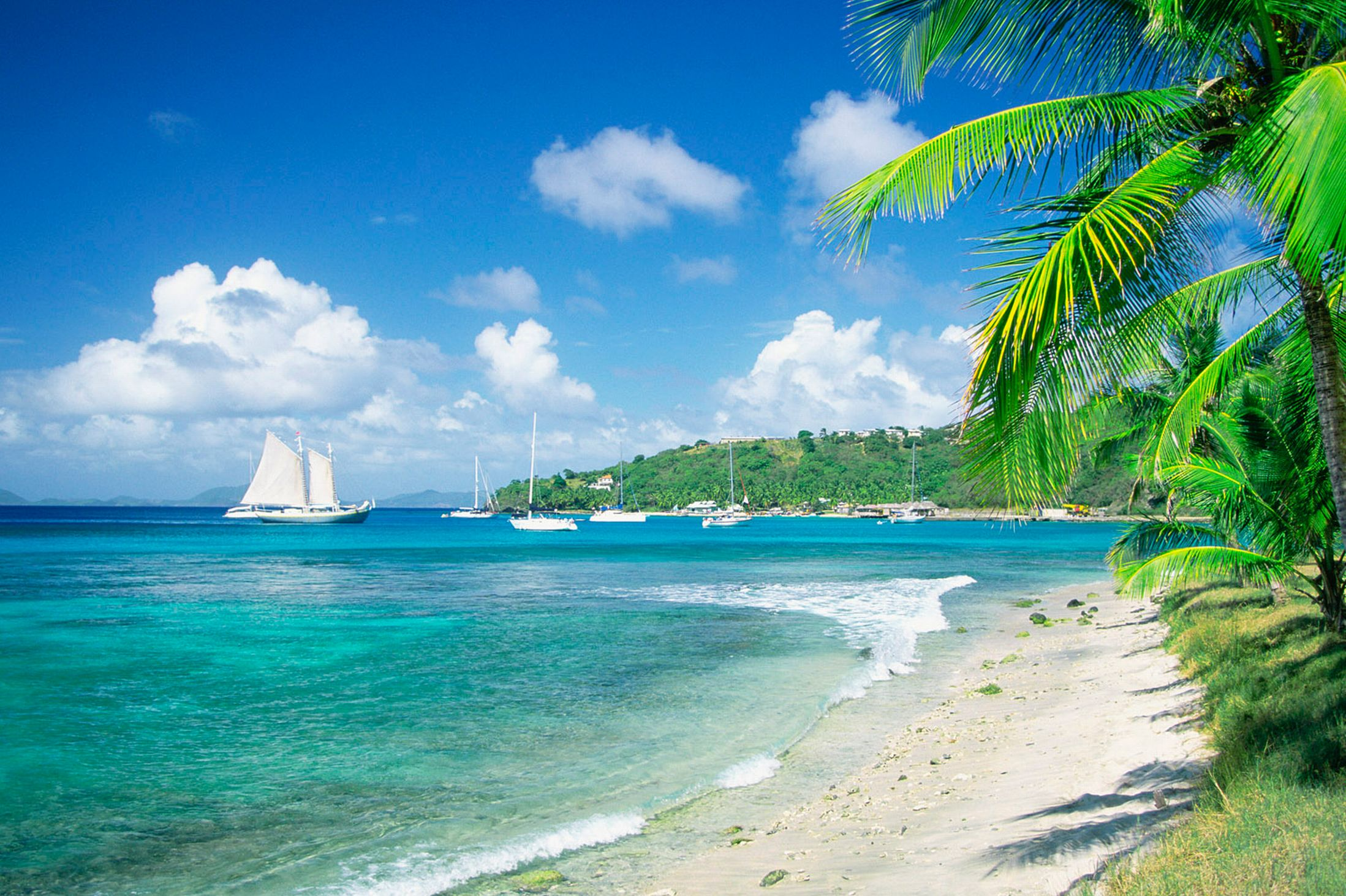 Incredible deals on american and caribbean cruises for Beautiful beaches in la