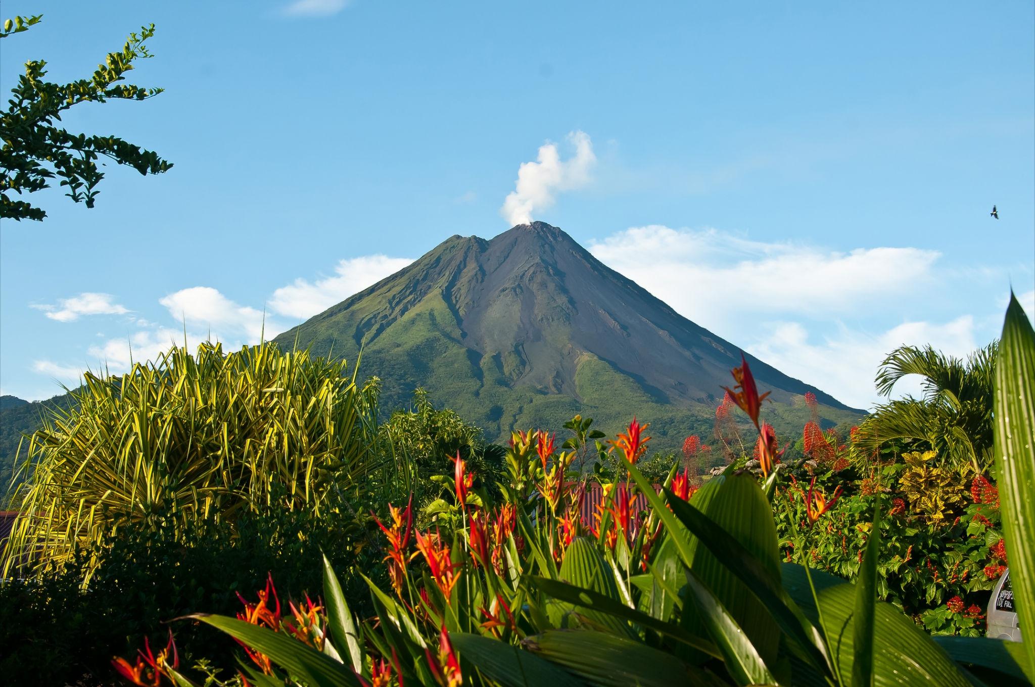 Coffee Tour Costa Rica La Fortuna