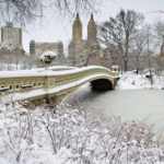 New-York-Gallery-central-park-winter-snow